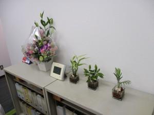 東京新事務所4